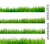 grass isolated on white. and... | Shutterstock .eps vector #204311572