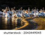 A Wide Angle Shot Of A Group Of ...