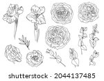 flowers line drawn on a white... | Shutterstock .eps vector #2044137485