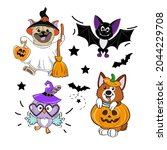collection of funny animals in... | Shutterstock .eps vector #2044229708