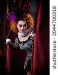 Amusing Clowness In Beautiful...