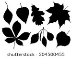 Vector Silhouette Leaves Of...