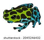 zimmermann's dart frog. little...   Shutterstock .eps vector #2045246432