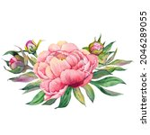 pink peony bouquet for greeting ...   Shutterstock . vector #2046289055
