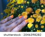 Hand Of Orange Nails Polish...