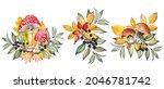 autumn set with mushrooms ...   Shutterstock . vector #2046781742