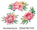 pink peony bouquet compositions ...   Shutterstock . vector #2046781745