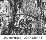 distress old dry wooden bark...   Shutterstock .eps vector #2047135445