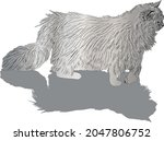 illustration with furry cat... | Shutterstock .eps vector #2047806752