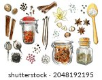 spices and herbs  jars of... | Shutterstock . vector #2048192195