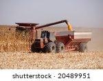 combine harvesting corn  san...