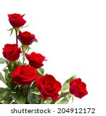 Stock photo red roses 204912172