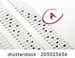 blank sheet test  selective... | Shutterstock . vector #205025656