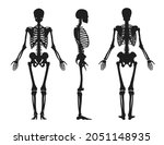 human black silhouette of... | Shutterstock .eps vector #2051148935