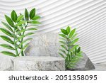 3d Stone Podium With Green Leaf ...