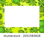 glade in the forest. frame with ...   Shutterstock .eps vector #2051585828