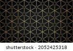 pattern with thin golden...   Shutterstock .eps vector #2052425318