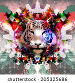 abstract tiger face background   Shutterstock . vector #205325686