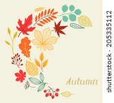 background of autumn leaves in... | Shutterstock .eps vector #205335112
