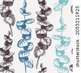 hand sketched eucalyptus...   Shutterstock .eps vector #2055211925