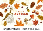 a collection of autumn natural... | Shutterstock .eps vector #2055461168