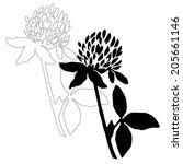 Black Clover Flower Isolated O...