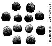 pumpkins set vector hand...   Shutterstock .eps vector #2057379995