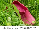 Small photo of A pair of pink rubber galoshes in the green grass