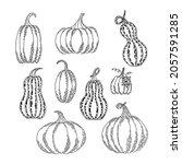 set of hanfdrawn pumpkins. line ...   Shutterstock .eps vector #2057591285