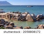 Cape Cormorants Or Cape Shags ...