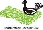 bird vector illustraion | Shutterstock .eps vector #205884052