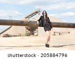business jet set woman at... | Shutterstock . vector #205884796