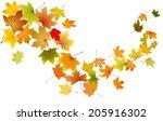 maple autumn falling leaves ...   Shutterstock .eps vector #205916302