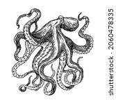 sea octopus. engraved hand... | Shutterstock .eps vector #2060478335