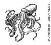 sea octopus. engraved hand... | Shutterstock .eps vector #2060478338