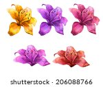 watercolor handmade colorful... | Shutterstock . vector #206088766
