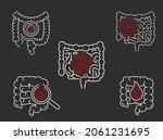 gut inflammation  pain ... | Shutterstock .eps vector #2061231695
