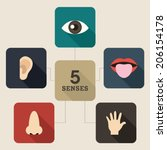 five senses icon. mind map... | Shutterstock .eps vector #206154178