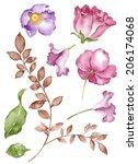 watercolor illustration flower...   Shutterstock . vector #206174068