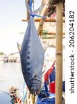 Small photo of Fresh sea fish is hanging headlong on a hook.