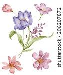 watercolor illustration flower... | Shutterstock . vector #206207872