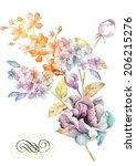 watercolor illustration flowers ... | Shutterstock . vector #206215276