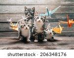 Four Cute Little Kittens Among...