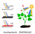 white reflects all colors of... | Shutterstock .eps vector #206506162