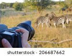 photographing wildlife  south...   Shutterstock . vector #206687662