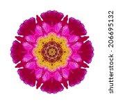 flower mandala isolated on...   Shutterstock . vector #206695132