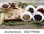 traditional chinese herbal... | Shutterstock . vector #206779048