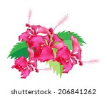 Beautiful Flower, Illustration Group of Fresh Red Hibiscus Flowers or Bunga Raya on Green Leaves Isolated on A White Background