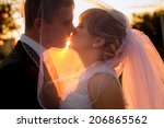 silhouette of bride and groom... | Shutterstock . vector #206865562