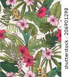 seamless sketch tropical flower ... | Shutterstock .eps vector #206901298
